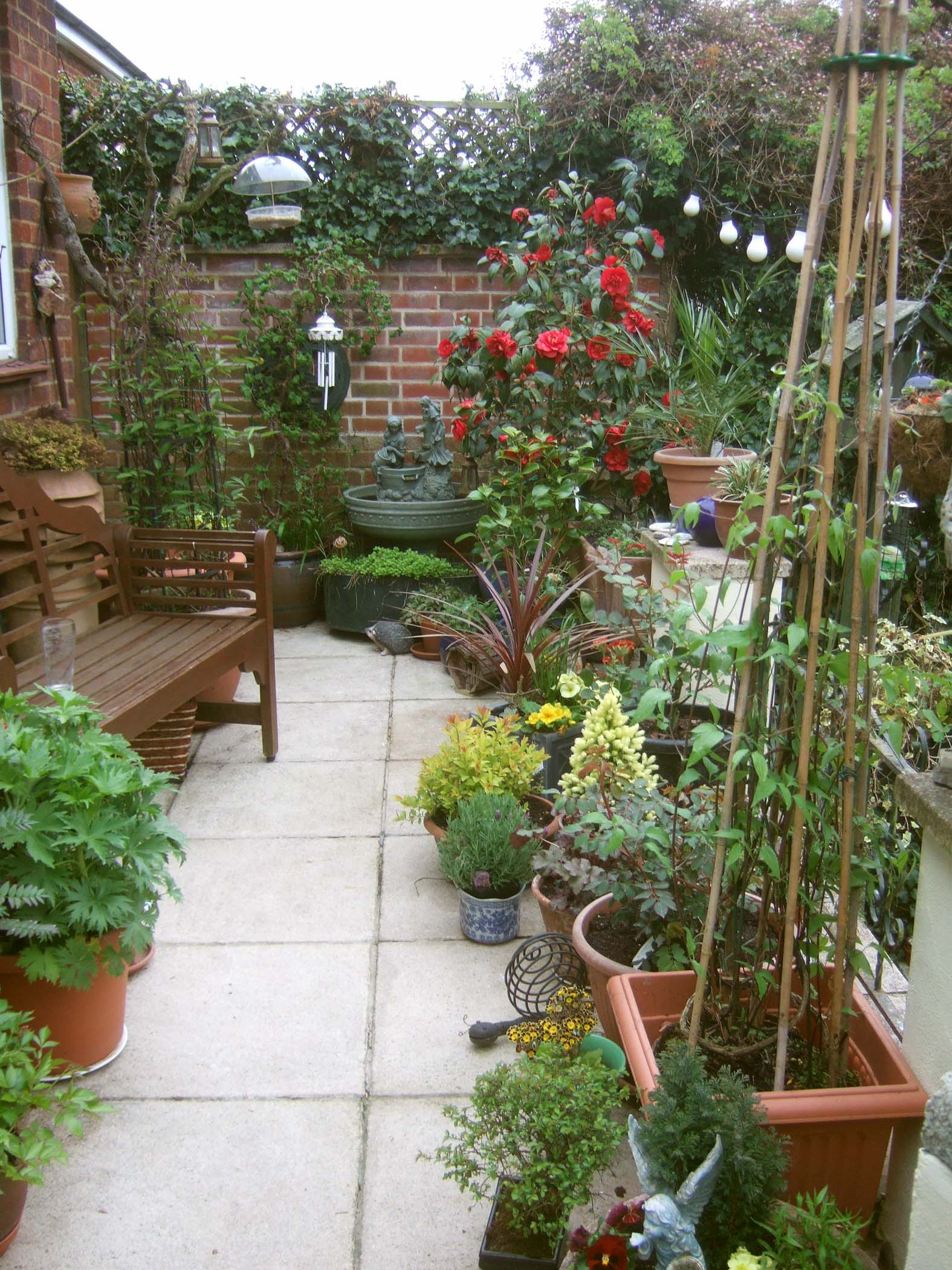 Patio Garden Plants 25 Best Ideas About Porch On